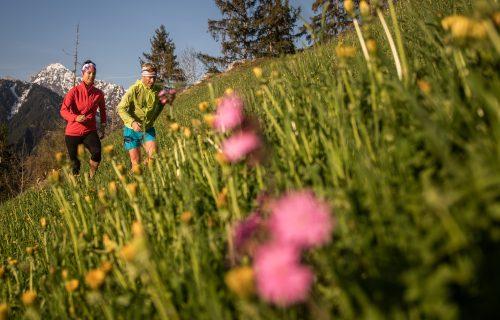 Laufen am Berg mit Alpenrosen